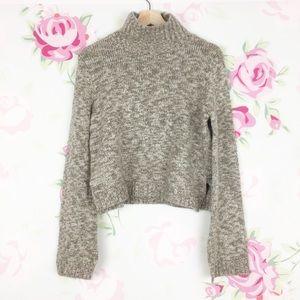 Zara Knit Chunky Turtleneck Crop Sweater S